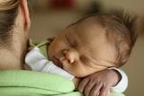 Fáze spánku u dospìlých a u dìtí